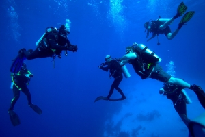 Safety and small groups of diver in Lykia world diving centre Oludeniz Turkey